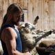 Swisswool Schafschur junger Mann trägt Schaf